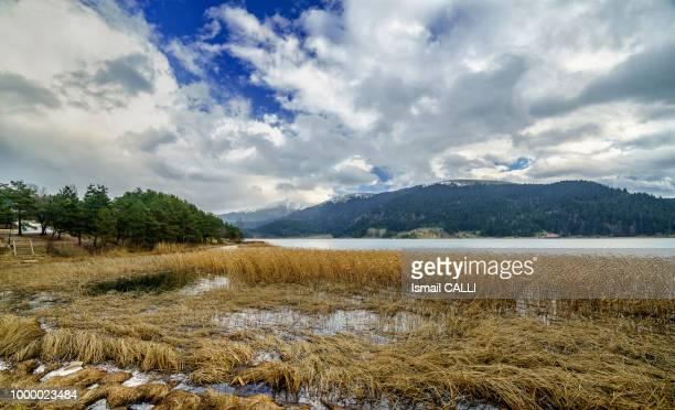 Abant Lake in December...