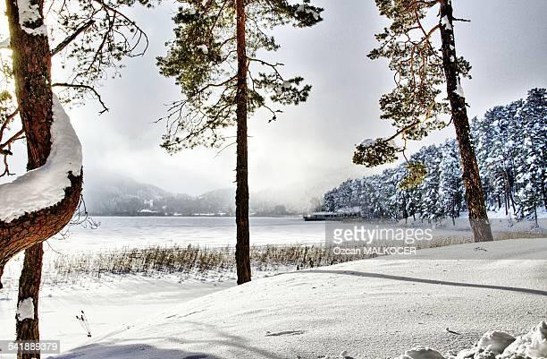 Abant Lake (Frozen)