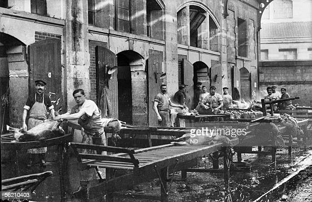 Abattoirs of the Villette a washing in hot water of sheeps Paris about 1900