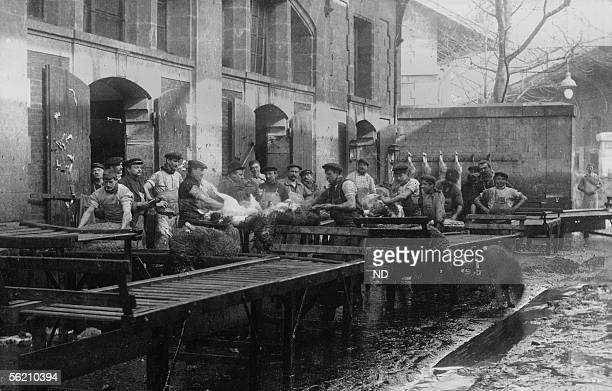 Abattoirs of the Villette a washing in hot water the sheep meat Paris XIXth district about 1900