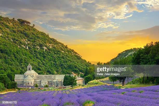 abbaye de senanque in provence with lavander fields - abadia mosteiro - fotografias e filmes do acervo