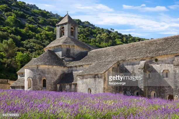 Abbaye de Senanque Provence