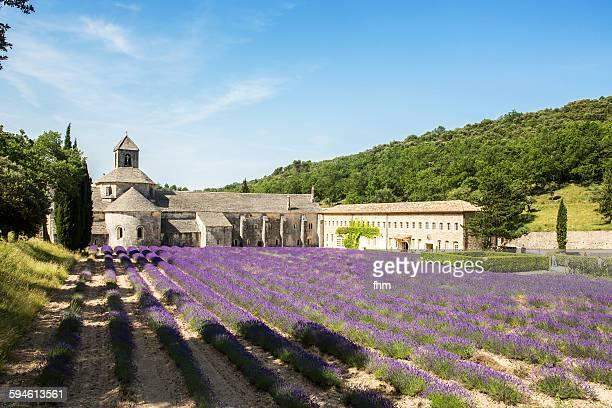 abbey notre-dame de sénanque, france - cisterciense - fotografias e filmes do acervo