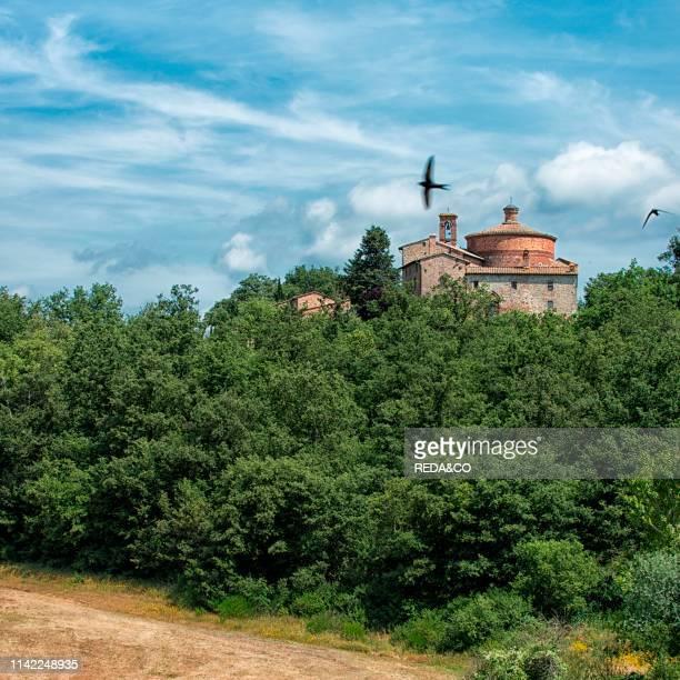 Abbey of San Galgano. Chiusdino. Tuscany. Italy. Europe.