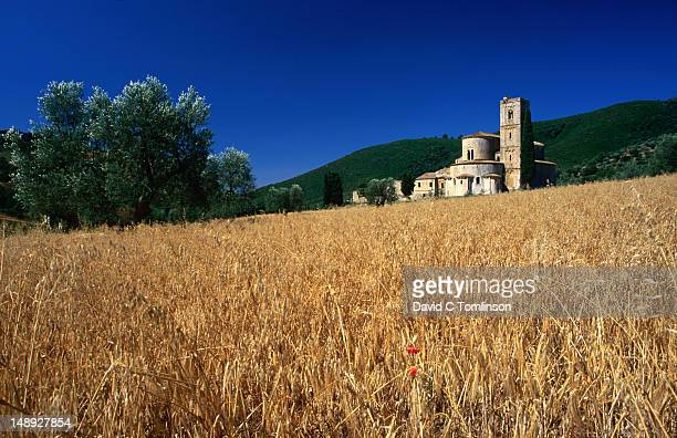 Abbey of Sant'Antimo from across a field near Montalcino.