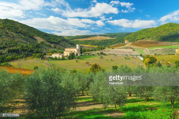 Abbey of Sant'Antimo in Tuscany with olive trees in the foreground
