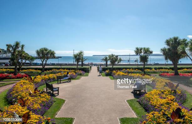 abbey park by the sea in torquay, devon - torquay,_victoria stock pictures, royalty-free photos & images