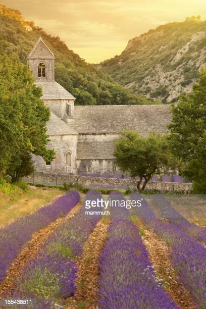 Abbey with blooming lavender field at dusk