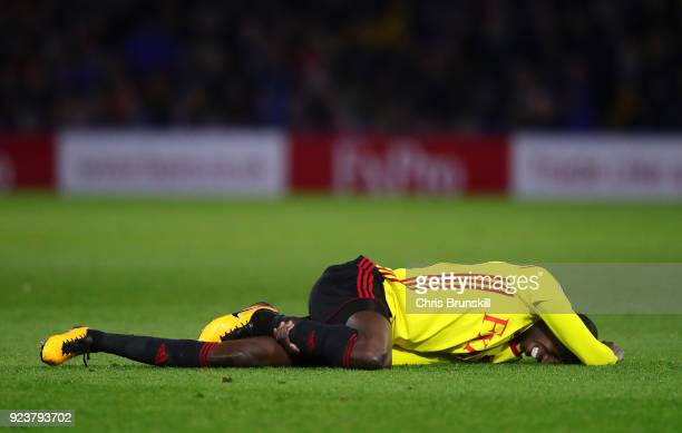 Abdoulaye Doucoure of Watford goes down injured during the Premier League match between Watford and Everton at Vicarage Road on February 24 2018 in...