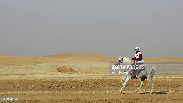 Abdulla Fetais Al Marri of Qatar crosses the desert during the Equestrian Endurance Event at the Mesaieed Endurance Course 15th Asian Games Doha 2006...