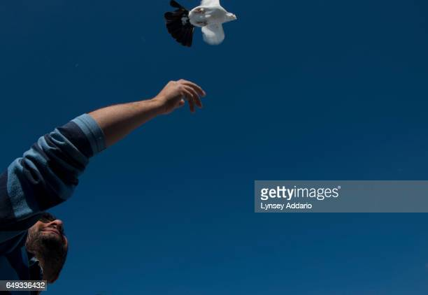 Abdullah alNoeimi a Syrian refugee holds up a pigeon to attract his other pigeons on the roof of his trailer at Killis Camp at the Turkish Syrian...