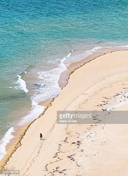 Abel Tasman National Park - Aerial view of beach with woman walking