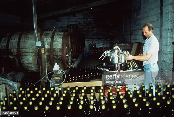 Abfüllen von Pommeau in BeuvronenAuge 1993