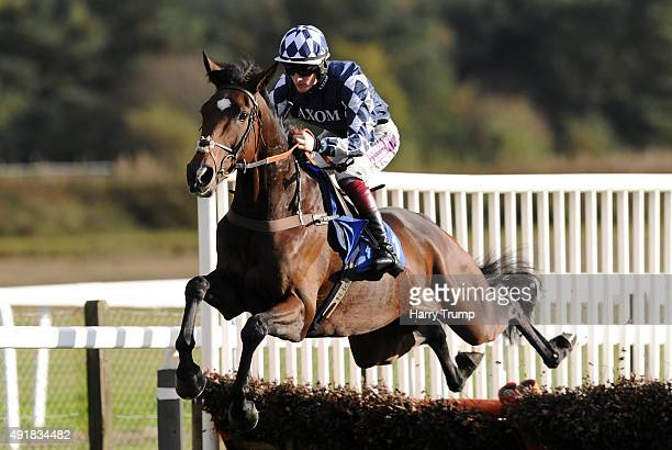 Abidjan ridden by Sam TiwstonDavies jumps during the great point media investments novices hurdle race at Exeter Racecourse on October 8 2015 in...