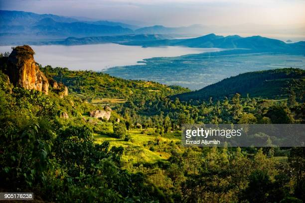 abidjatta-shalla national park, great rift valley, ethiopia - ethiopia stock photos and pictures