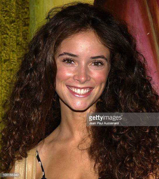 Abigail Spencer during The MY TEE Summer Soiree Hosted by Designer Chrissy Azzaro of MY TEE and actress Brittany Snow at The Lounge in West Hollywood...