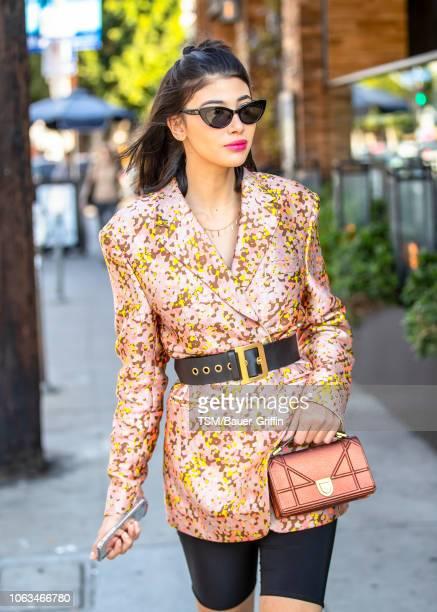 Abla Sofy is seen on November 18 2018 in Los Angeles California