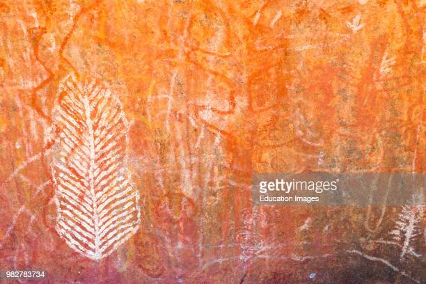 Aboriginal cave art at Uluru Central Australia