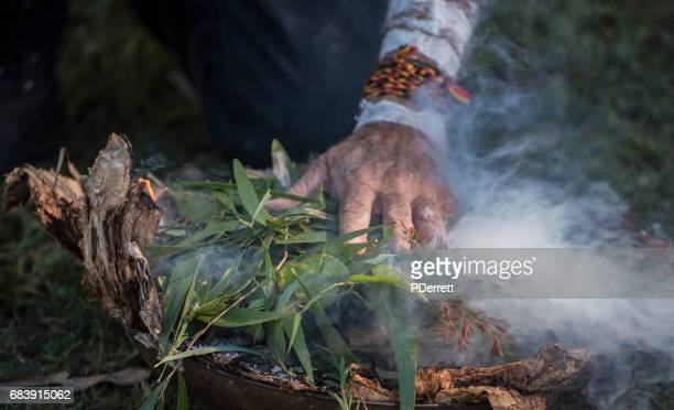 Aboriginal elder's hand places eucalyptus leaves on fire.