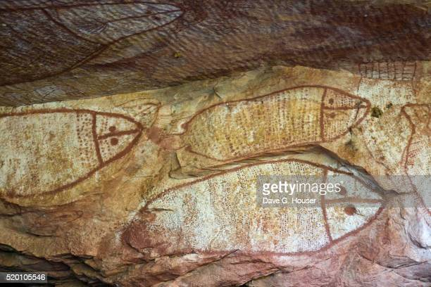 aboriginal rock art depicting fish - cave painting stock pictures, royalty-free photos & images