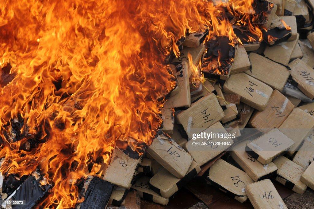 HONDURAS-CRIME-DRUGS-DESTRUCTION : News Photo