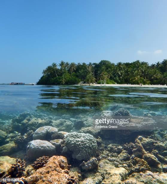 Above And Underwater Tropical Lagoon Of Biyadhoo, Maldives