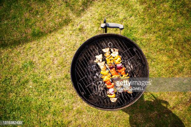 above bbq on grass - vegetable kebab stock pictures, royalty-free photos & images