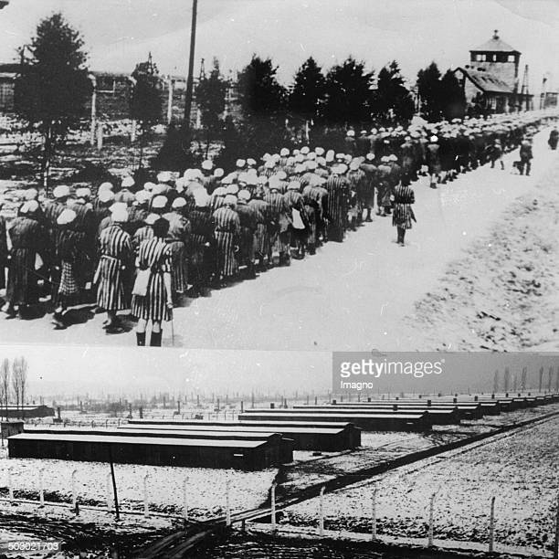 Female prisoners return after their daily work to the concentration camp Auschwitz guarded by guards with long sticks Ca 1943 Below view of the camp...
