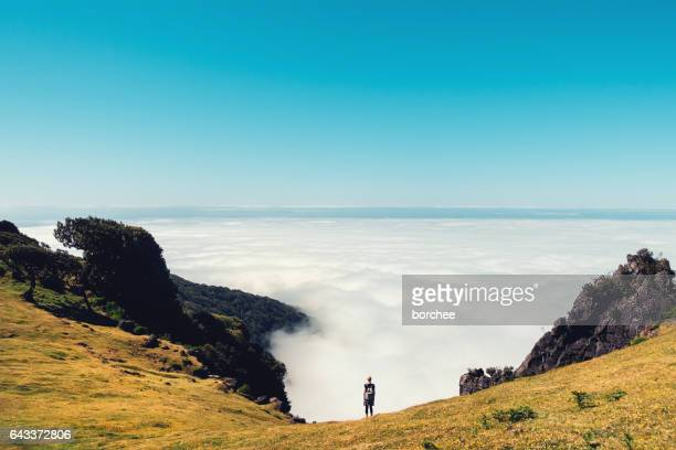 above the cloud on madeira island - madeira island stock photos and pictures