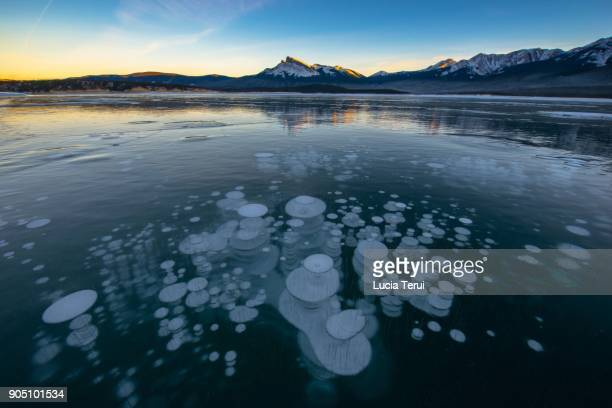 abraham lake, alberta, canada - see abraham lake stock-fotos und bilder