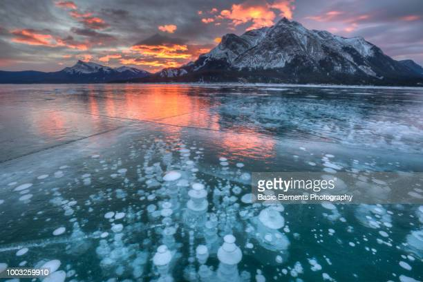 abraham lake - banff national park stock pictures, royalty-free photos & images
