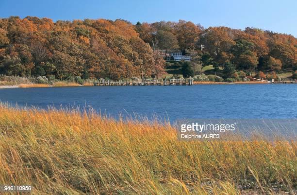 Abritant de nombreux bois long island est une illustration parfaite de l 't indien l'automne Abritant de nombreux bois long island est une...