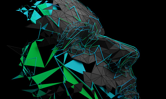 Abstract 3D Rendering of Polygonal Human Face 1059172726