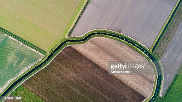 abstract aerial of agricultural landscape with patchwork of assorted green and golden crops in adjacent fields - prosperity stockfoto's en -beelden