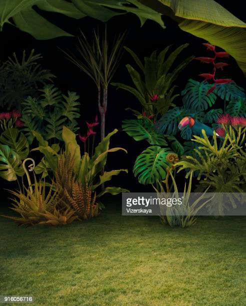 Abstract background of night jungle