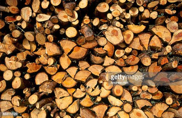 Abstract background pattern of stacked wooden logs