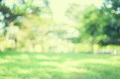 abstract blurred green color nature public park outdoor background at spring and summer season with sunlight effect and vintage color tone for design concept