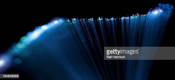 Abstract close-up of top section of a fiber optic lamp