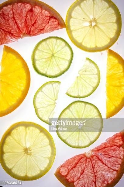 abstract composition with various backlit citrus slices on white background - lisa bitter stock-fotos und bilder