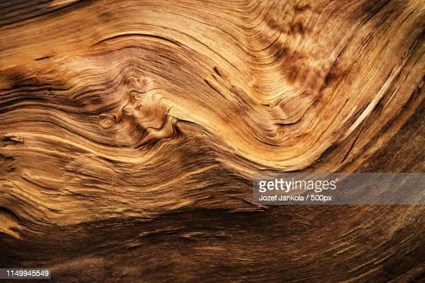 abstract detail of a wavy split wood - macrofotografia foto e immagini stock
