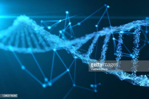 abstract digital network dna structure - dna stock pictures, royalty-free photos & images
