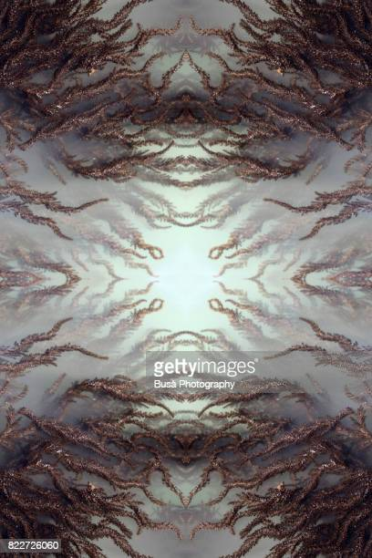 Abstract image: kaleidoscopic image of brown algae in murky water in the sea. Venice, Italy