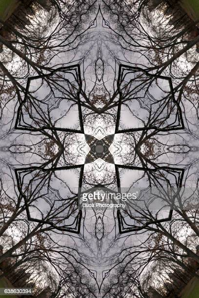 Abstract image: kaleidoscopic image of winter trees against a gloomy sky forming a cross