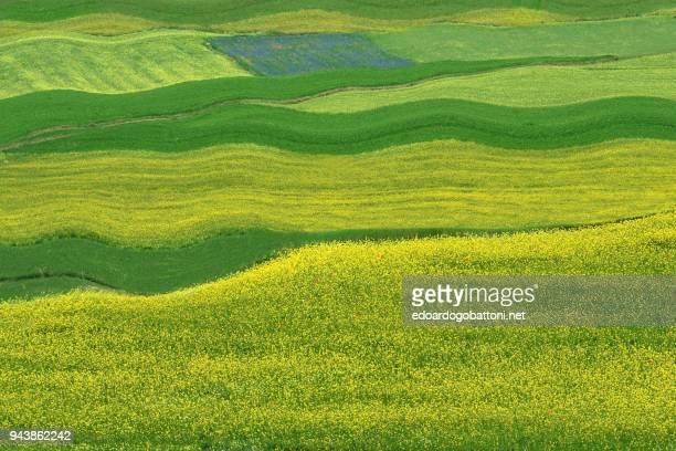 abstract landscape 22 - edoardogobattoni stock pictures, royalty-free photos & images