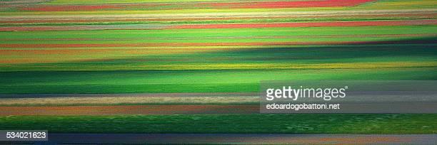 abstract landscape - edoardogobattoni - fotografias e filmes do acervo