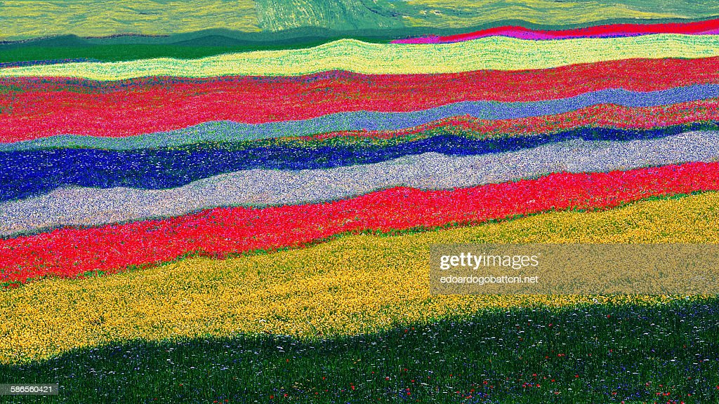 Abstract landscape : Foto stock