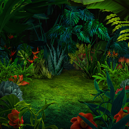 Abstract night jungle background 916057678