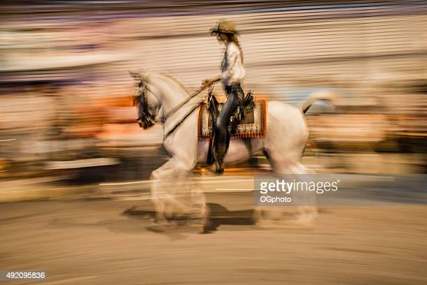 Abstract of a female rider during horse parade