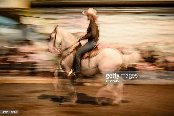 Abstract of a rider during horse parade