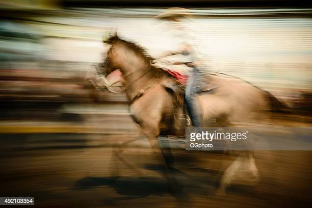 abstract of a rider during horse parade - ogphoto stock photos and pictures
